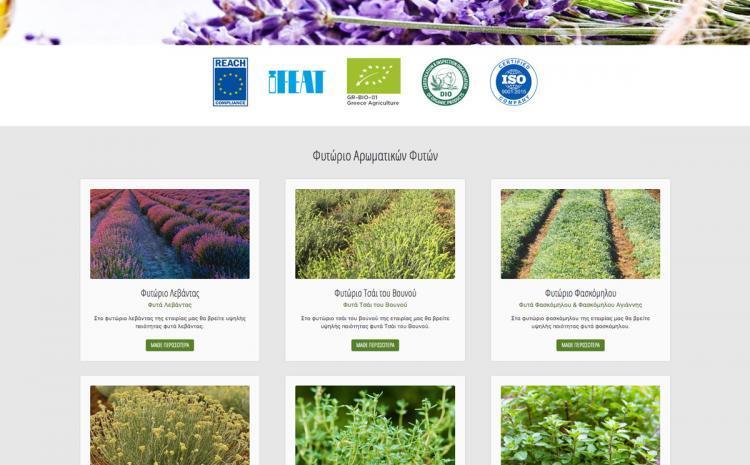 Κατασκευή ιστοσελίδας Herbs & oils